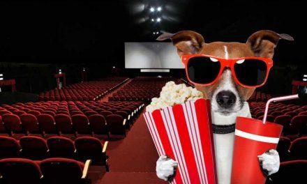 Estrenos de cine jueves 22 de julio de 2021
