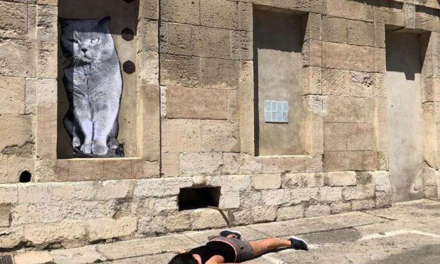 Stefdies: la nueva moda que deja knockout a las selfies